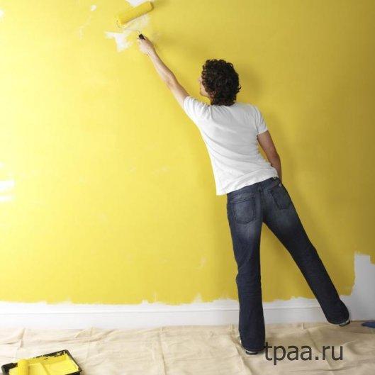 Окраска стен — выбор краски