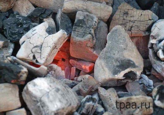 Применение древесного угля.